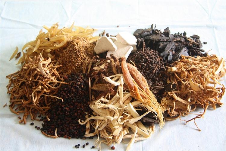 Thuốc Đông y giúp kích thích tóc phát triển nhanh, hiệu quả an toàn