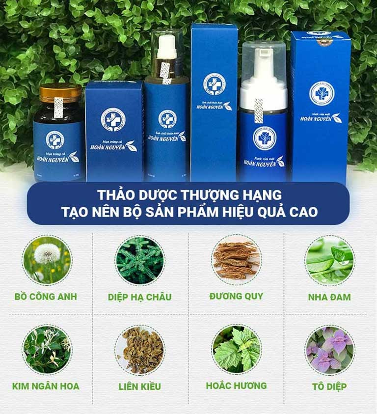 Hoàn Nguyên được bào chế hoàn toàn từ thảo dược tự nhiên giúp mang lại hiệu quả trị mụn an toàn, không tác dụng phụ