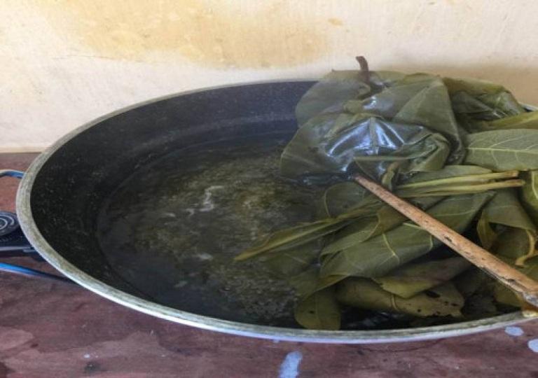 Đun nước lá bàng rửa mỗi ngày