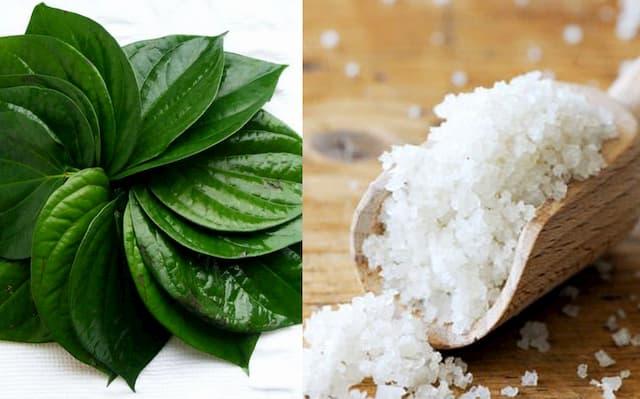 Sử dụng lá trầu không cùng muối trị chàm