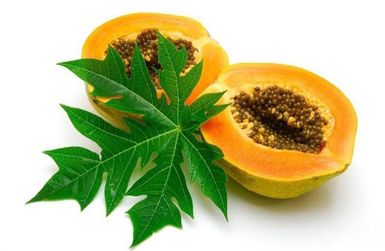 Trong dân gian lá cây đu đủ chữa viêm da cơ địa rất hiệu quả