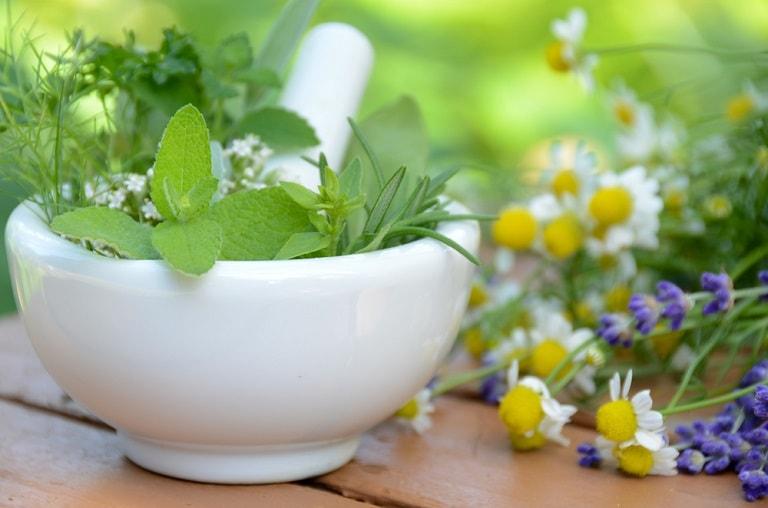 Trong Đông y có nhiều loại lá cây có khả năng chữa viêm ngứa dị ứng rất hiệu quả