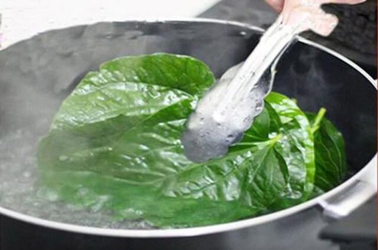 Nấu nước lá lốt để uống cũng là cách chữa viêm da cơ địa rất hiệu quả