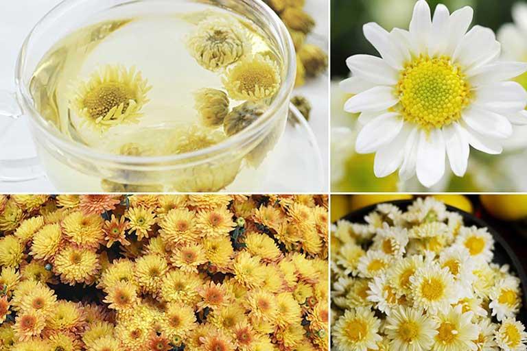 Hoa cúc sẽ giúp làm dịu các nốt mụn đinh râu, giảm đau nhức