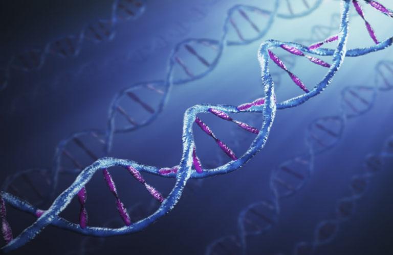 Bệnh lý này có thể hình thành do yếu tố di truyền