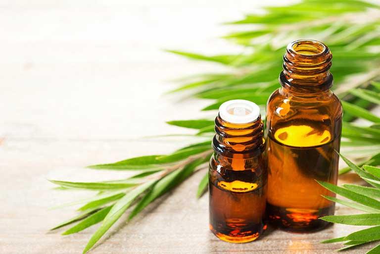 Tinh dầu trà giúp làm khô và se những vùng da bị viêm