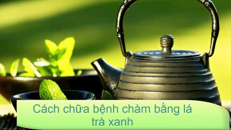 Lá trà xanh dùng chữa chàm khá hiệu quả