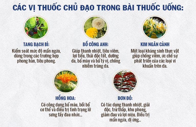 Một số vị thuốc trong chế phẩm cao uống của An Bì Thang
