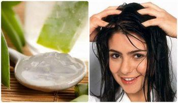 Cách trị rụng tóc bằng nha đam
