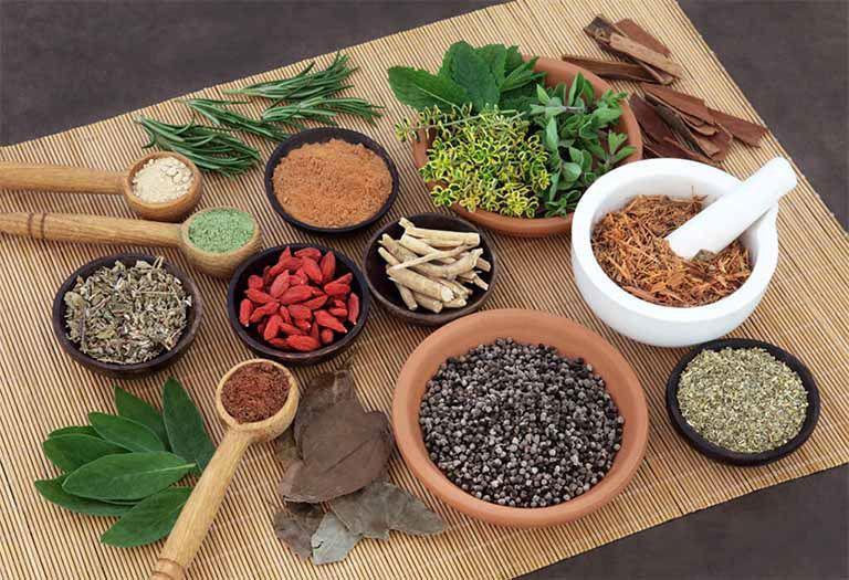 Một số vị thuốc Đông y trị hắc lào ở háng