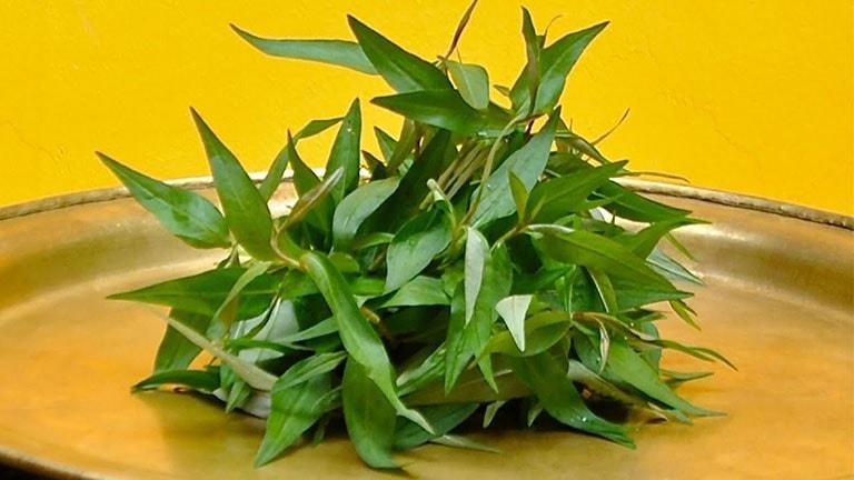 Lá rau răm có tác dụng loại bỏ một số yếu tố gây ra nấm bệnh trên da