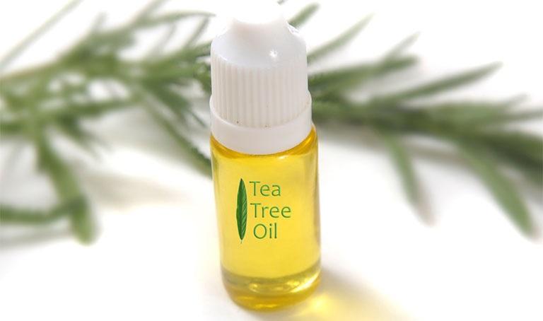 Dầu cây chè có tác dụng chống nấm, có thể kết hợp với dầu dừa để tăng hiệu quả